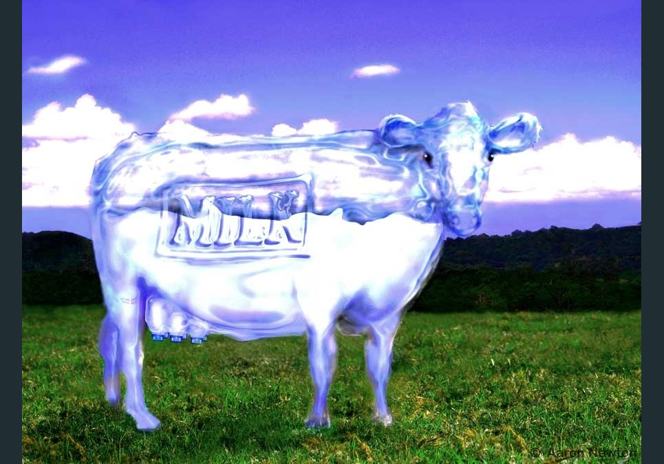 Milk show
