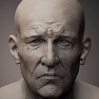 Miner sculpted portrait cover