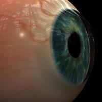 Eyefinal cover