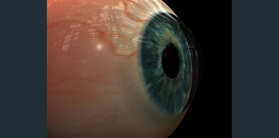 Eyefinal show