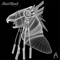 Steel hawk 1 large cover
