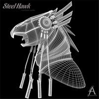 Steel hawk 1 large cover
