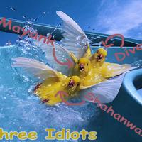 3 ideots copy cover