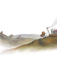 Satellite cover