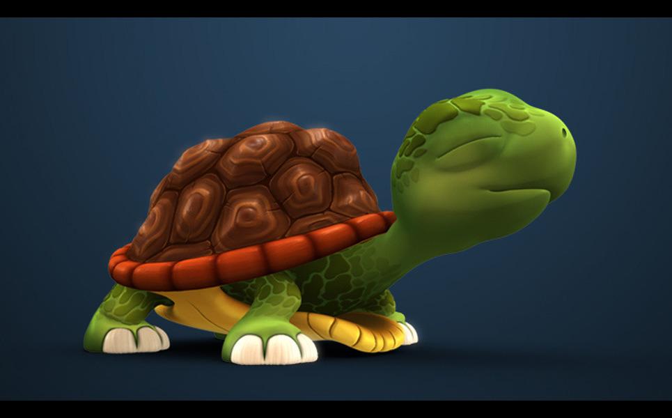 Turtle show