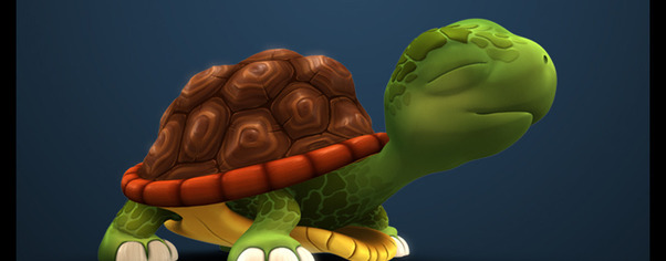 Turtle wide