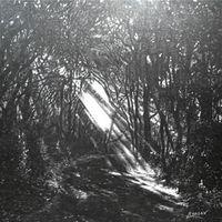 Sunbeam cover