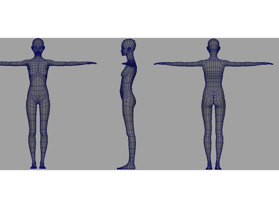 Asseion body wireframe show