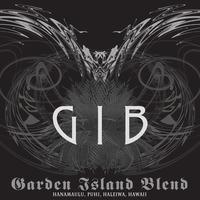 Final gib 01 cover