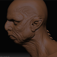Orc1 small
