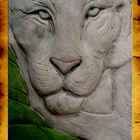 Cermaic sculpture white tiger life study cover