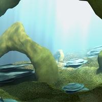 Underwater cover
