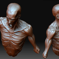 Skinny man cover