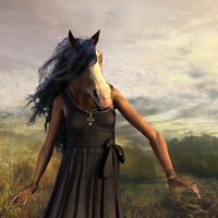 Summerhorse cover