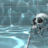 Skull final cover