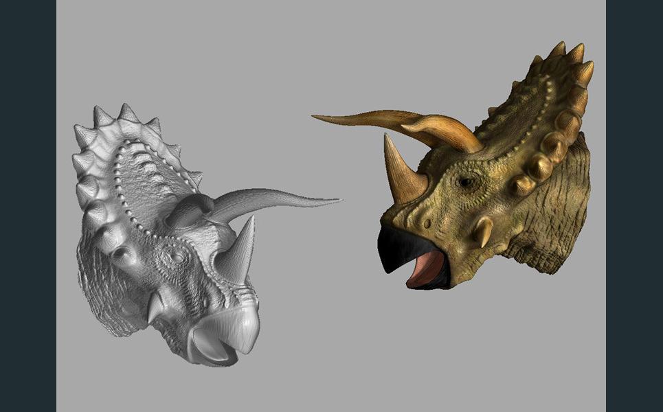 Triceratopshead show