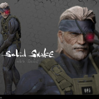 Solid snake cover