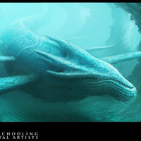 Whaleweb cover