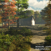 Forest house cover
