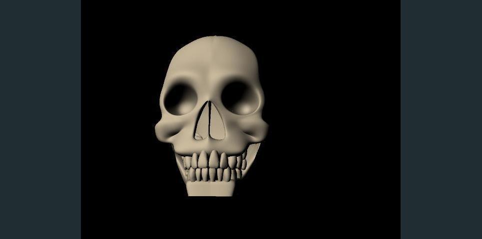 Skull show