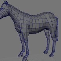 Horseshadedwire cover