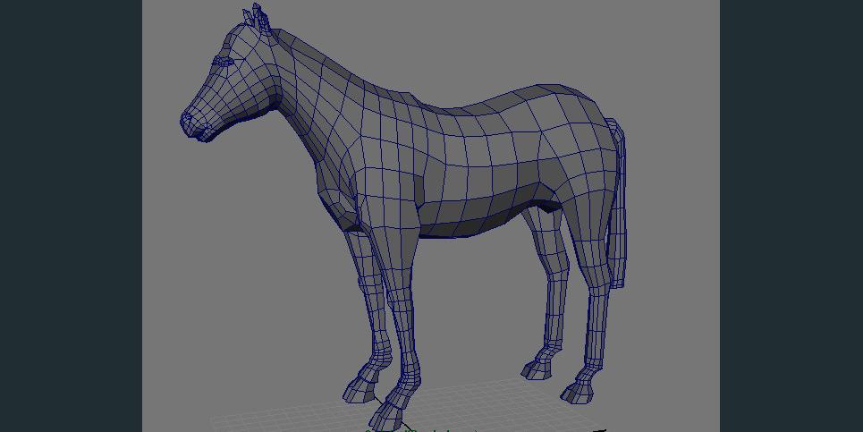 Horseshadedwire show