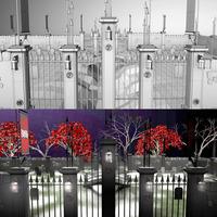 Still.cemetery4 cover