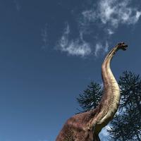 Brachiosaurs cover