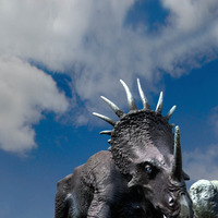 Styracosaurus cover