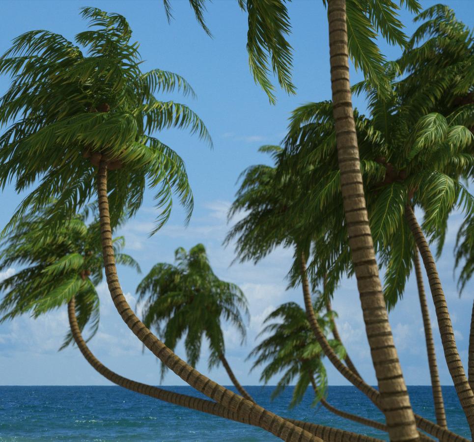 Hq palms logo 1 show