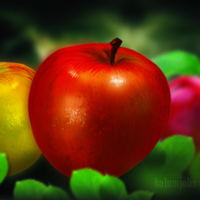 Apple painting cover