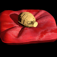 Grenade coussin rouge copie cover