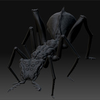 Zbrush document cover