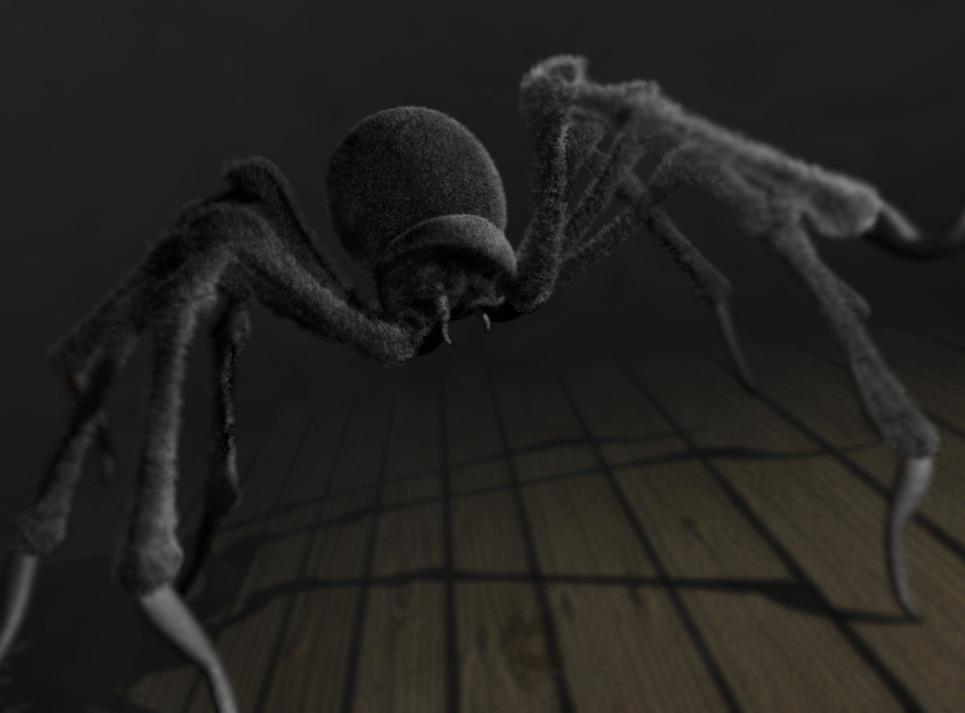 Spider final show