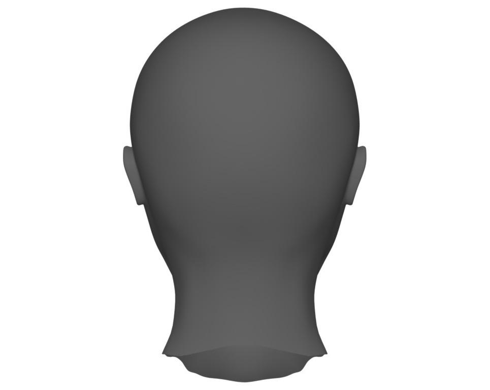 Face 4 show