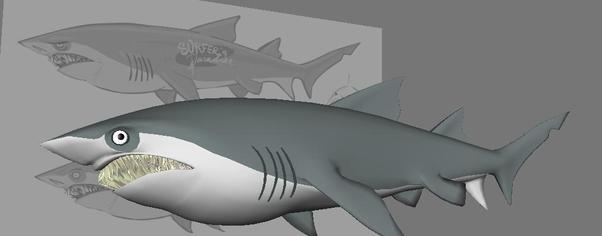 Sharkmod wide