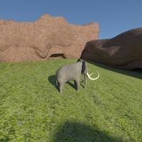 Elephant12 cover