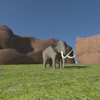 Elephant21 cover