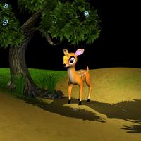 Deer 2  cover