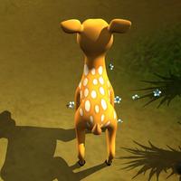 Deer 5  cover