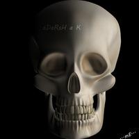 Skull 2  cover