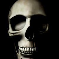 Craniul vedere frontala01 cover