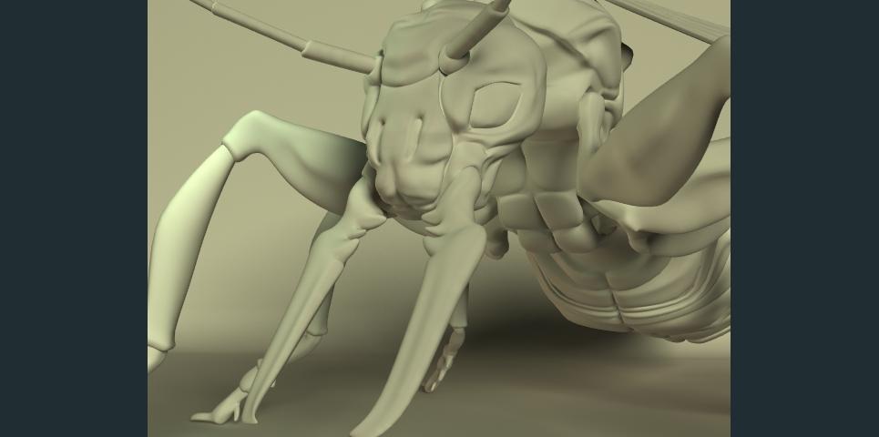 Queen ant 002 show