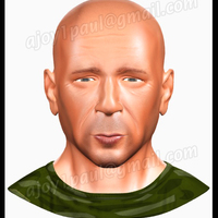 Face copy cover