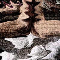 Snowyx1 cover