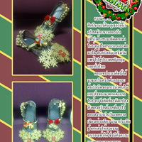 Merry cover