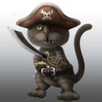 Pirate cat cover