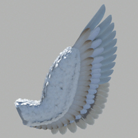 Wing test render cover