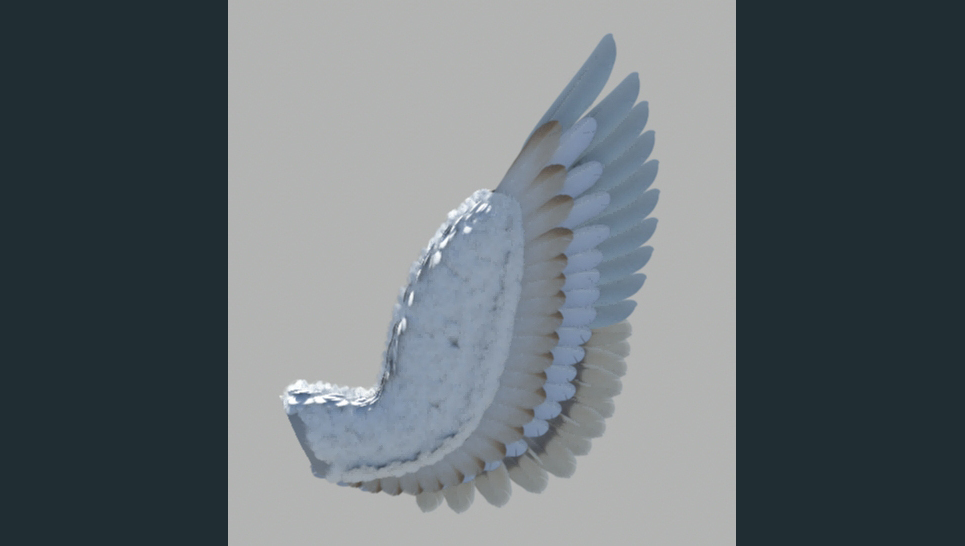 Wing test render show
