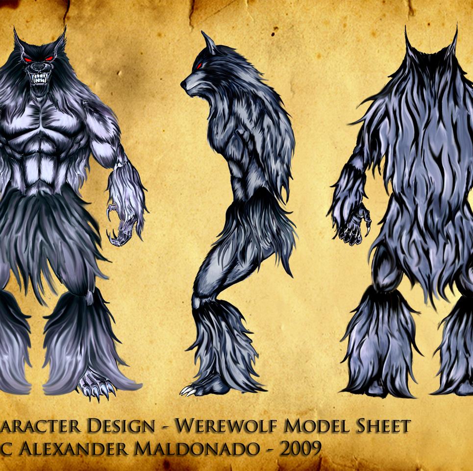 Character design   werewolf model sheet show